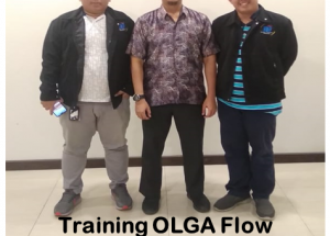 Training OLGA Flow Assurance
